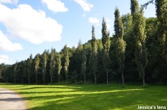 Svartdalen park
