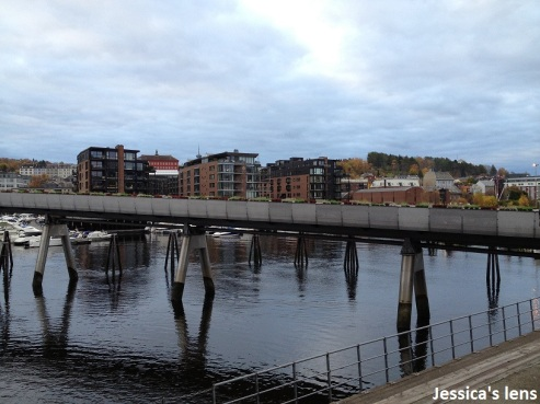 2012-10-21 Trondheim flower bridge