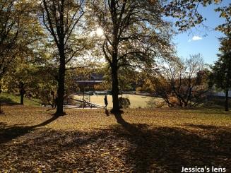 2012-10-25 Fall