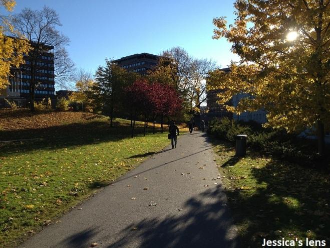 2012-10-25 Oslo