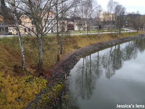 2012-11-03 Eidsvoll Glomma