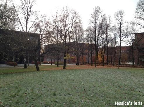 2012-11-06 Oslo