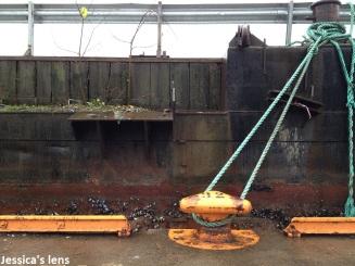 2012-11-11 Docks