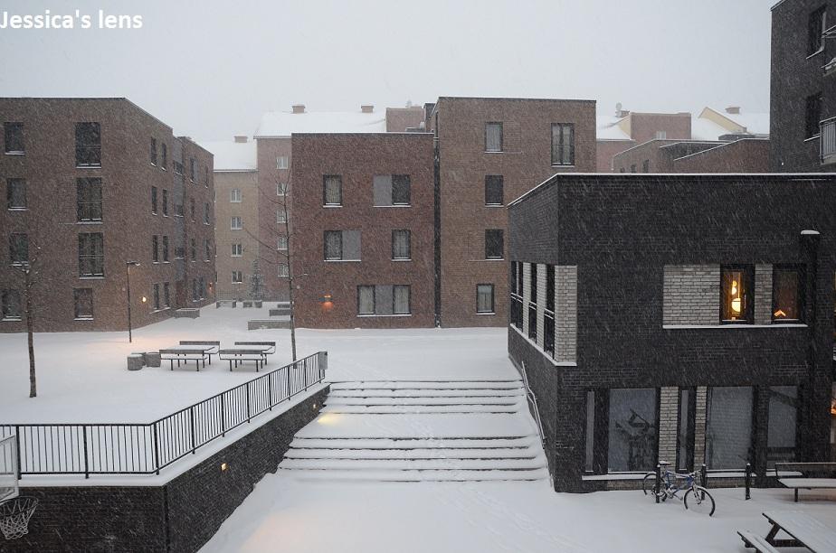 2012-12-15 Oslo7