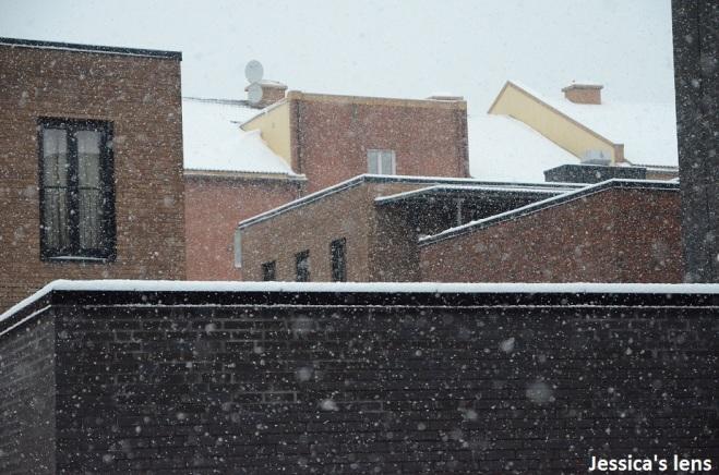 Roof tops