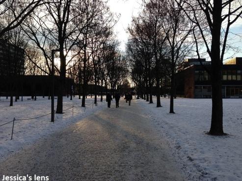 2013116 Oslo outside