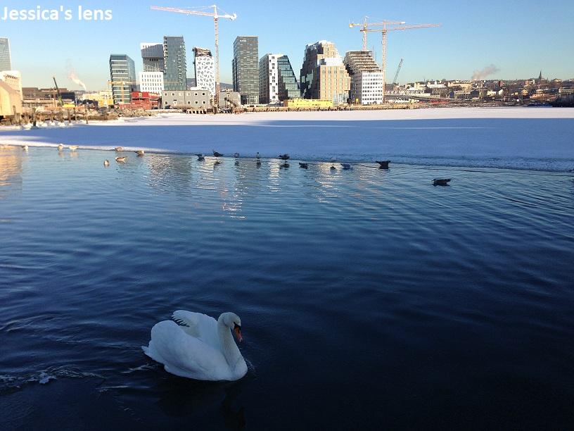 2013122 Oslo
