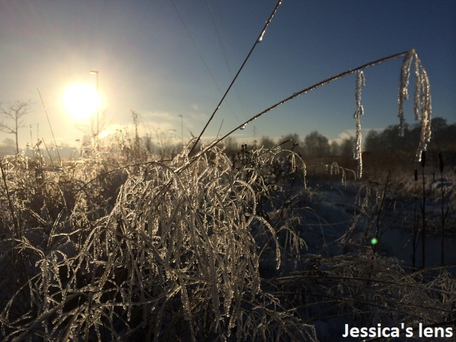 Melting frost